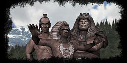 Diario tribu