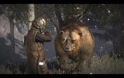 Brumas el oso