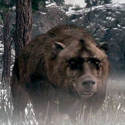 Rdr bear (in-game)