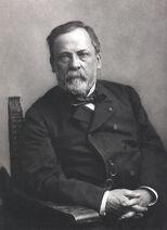 Louis Pasteur, foto av Paul Nadar, Crisco edit