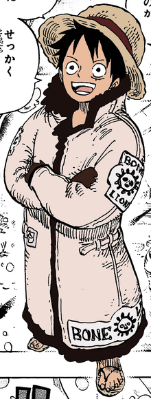 Luffy's Bone Lion Outfit-0