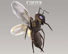 Etherea bugTex06