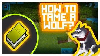 Wolf Taming