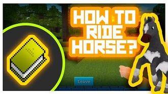 Horse Taming