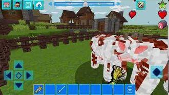 Breeding of Cows