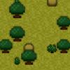 Low Forest D