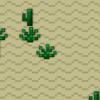 Low Desert