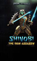 For-RG-Website shinobi-robot