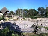 Shaefer Zoo