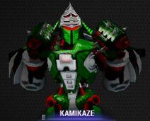 Kamikaze Portrait