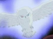 Mist Owl2