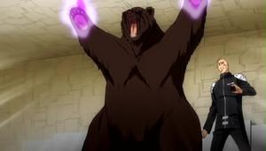 Demon Bear