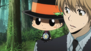 Reborn Confident in Tsuna