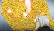 Uri-leopard