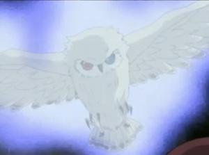 Mist Owl