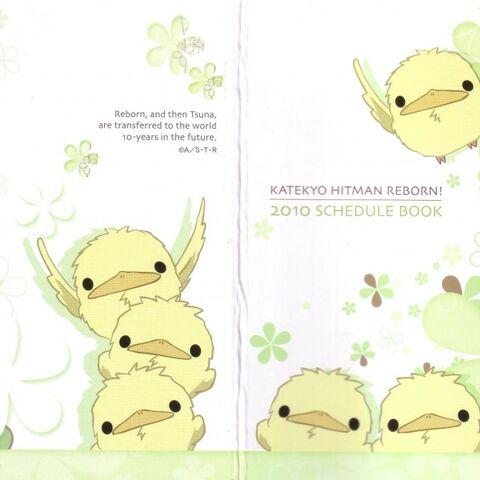 Cover: Hibirds