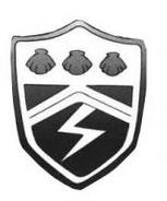 Símbolo del anillo del rayo