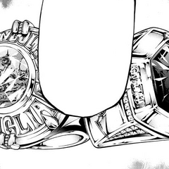 Vongola and Simon Ring.