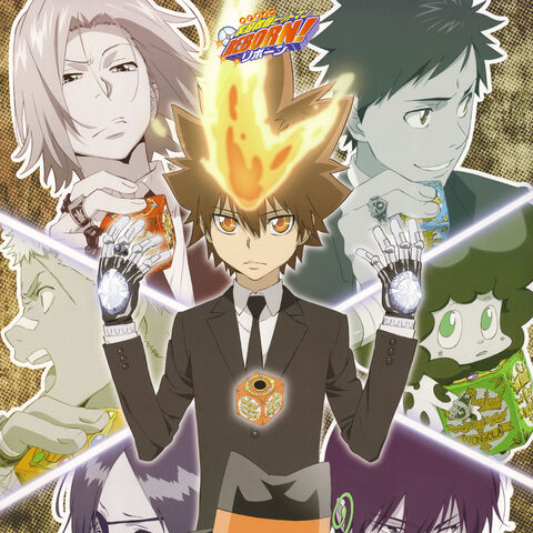 Cover: Vongola 10th generation and Reborn