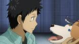 Yamamoto con sus mascotas