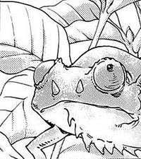 Leon Chameleon