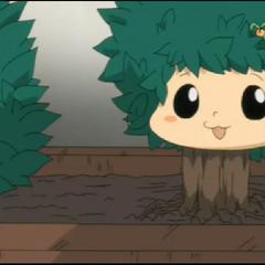 Small tree.