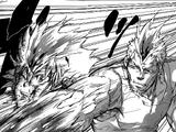 Tsunayoshi Sawada vs. Iemitsu Sawada