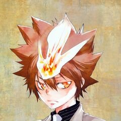 Tsuna removable mini-poster.
