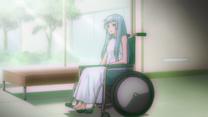 Bluebell en silla De ruedas