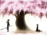 Sakura-Kura