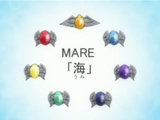 Mare Rings