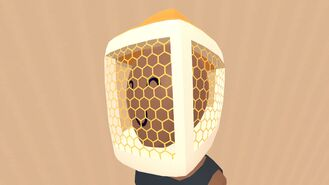 BeekeeperHat