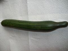 Komkommer-1