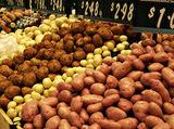 White round potato