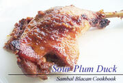 Sourplumduck