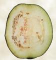 Eggplant-sliced.png
