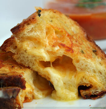 Basic Grilled Cheese Sandwich Recipes Wiki Fandom