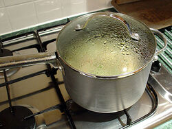 Rice-cooking