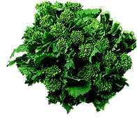 BroccolRabe