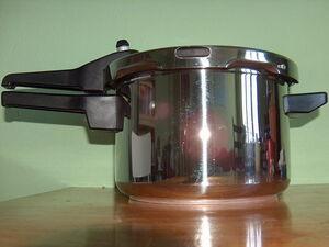 Pressure cooker 600