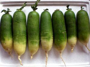 Green radishes