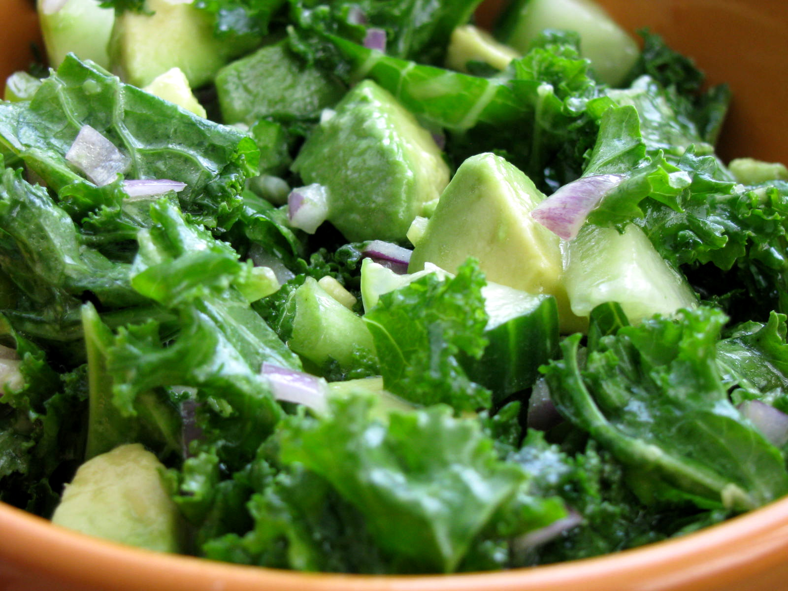Kale recipes recipes wiki fandom powered by wikia kale recipes forumfinder Gallery
