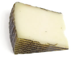 Cheese manchego