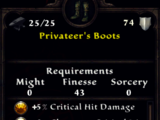 Privateer's Boots