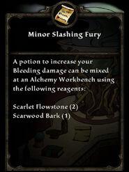 MinorSlashingFury