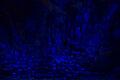 Glowlode mine deposits.jpg