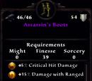 Assassin's Boots