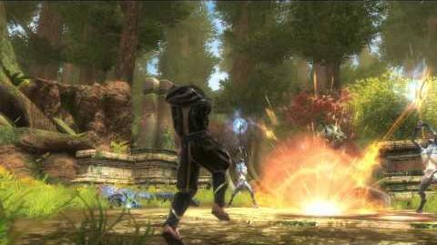 Visions Trailer - Kingdoms of Amalur Reckoning