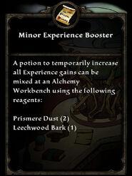 MinorExperienceBooster