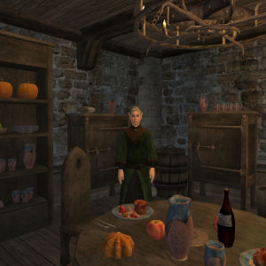Gaia The Healer's House